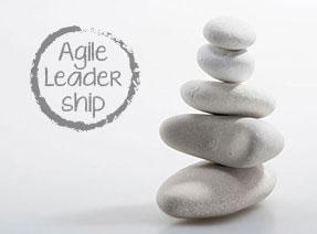 Agile Leadership 3.0 Werte und Prinzipien